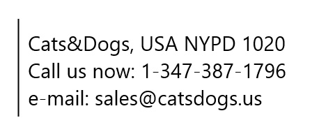 cats dogs contact